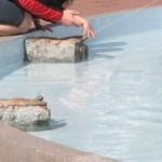 Farba do basenów zbiorników fontann – Rust Oleum 5500
